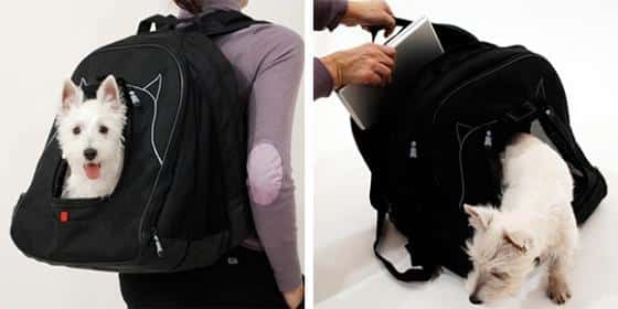 PetLaptopBackpack