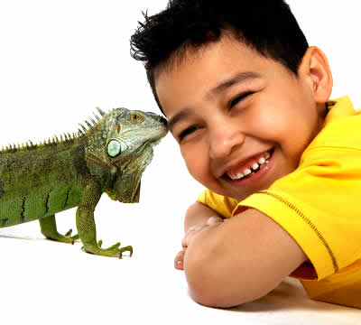 petrede-iguana-beijando-menino