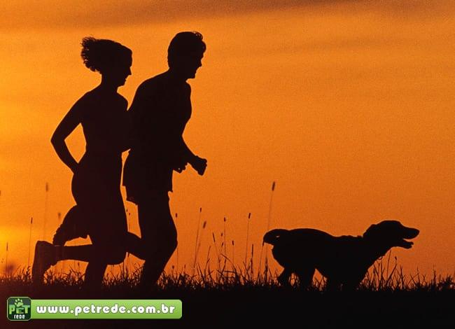 cachorro-exercicio-corrida-atividade-fisica-treinar-petrede