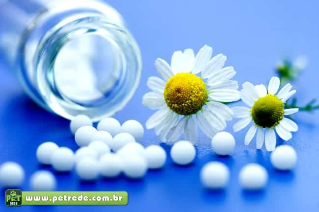 homeopatia-petrede