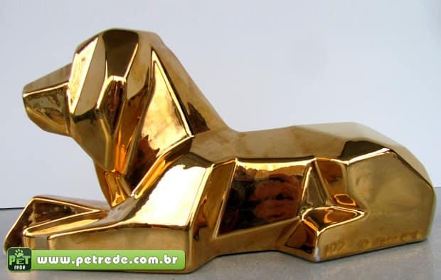 cachorro-ouro-dinheiro-valor-precioso-petrede
