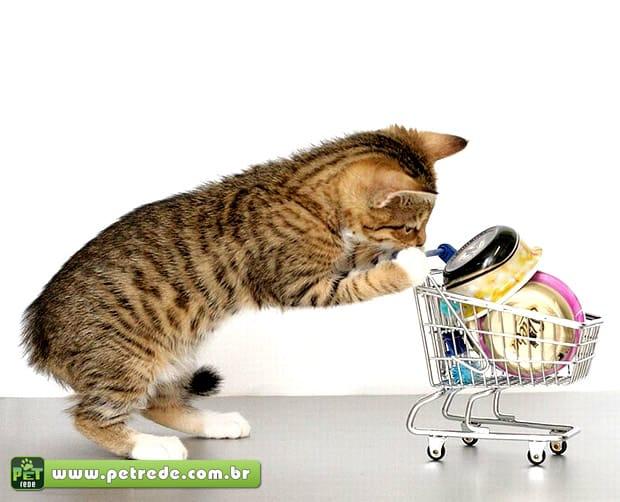 gato-fazendo-compras-mercado-petrede