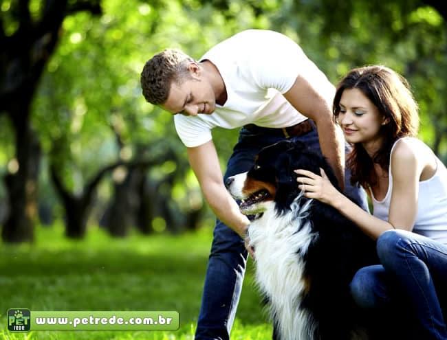 cachorro-casal-saude-qualidade-de-vida-petrede