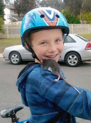 Aidan Pankey é visto com um de seus ratos de estimação em foto sem data. O menino morreu em junho de 2013 por uma infecção transmitida pelos animais. Sua família está processando o pet shop que vendeu o animal infectado (Foto: Familia Pankey/AP)